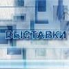 Выставки в Новоаннинском